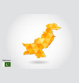 geometric polygonal style map of pakistan low vector image
