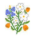 pansy daisy and tulip flower bouquet vector image vector image