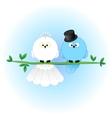 Stylish Bride Groom Birds vector image