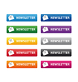 newsletter buttons vector image