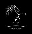horse symbol on black background vector image