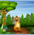 a hyena looking for prey at forest scene vector image vector image
