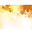 Autumn design background with leaves vector image vector image