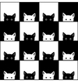 Black White Cat Chess board Background vector image vector image