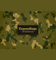 camouflage military army fabric style texture vector image