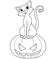 halloween on pumpkin coloring page vector image