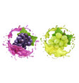 red and white wine grapes and juice splash vector image