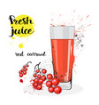 red currant juice fresh hand drawn watercolor vector image vector image