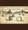rural landscape with hay bales vector image