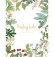 vintage card medicinal organic healing herbs vector image vector image