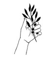 womens hand holding plant trendy linear and vector image vector image