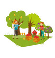 young gardeners gathering harvest flat poster vector image vector image