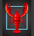 a red lobster on black template vector image