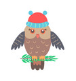 closeup of owl with hat on vector image