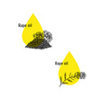 rape oil icons set hand drawn sketch extract of vector image
