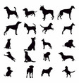 silhouette dog set various dog pet hound guard vector image vector image
