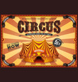vintage yellow circus poster with big top vector image vector image