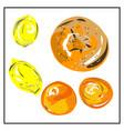 citrus fruit lemon orange grapefruit isolated vector image vector image