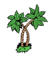 palm tree vector image