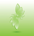 Green nature leaves vector image