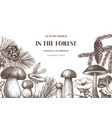 autumn forest design hand drawn edible mushroom vector image vector image