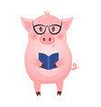 back to school happy pig on white background vector image
