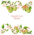 blossoming apple branch vector image vector image