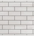 brick wall white texture vector image
