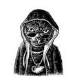 cat rapper dressed necklace with rat vintage vector image