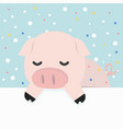 cute little pig holding empty blank board vector image