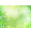 Green Background with light vector image vector image