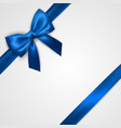 realistic blue bow with ribbons isolated on white vector image vector image