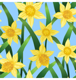 seamless background with daffodils vector image