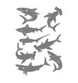 set sharks vector image vector image
