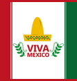 viva mexico flag hat traditional costume image vector image vector image