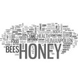 what can honey do to you text word cloud concept vector image vector image