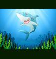 white shark cartoon underwater vector image vector image