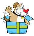 Cartoon dog inside a gift box vector image vector image