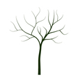 dry tree on white background vector image vector image
