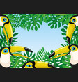 frame toucan birds and tropical leaves vector image