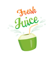 Fresh Coconut Juice vector image vector image