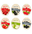 set labels berries and fruit cherry vector image