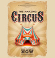 vintage old circus poster with red and blue big vector image vector image