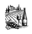 wine ink sketch vector image
