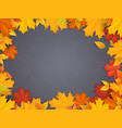 back to school chalkboard maple leaves vector image