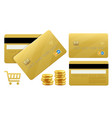 banking gold credt cards vector image vector image