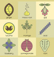 color superfood line icons set color background vector image vector image