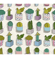 Cute seamless cactus patter vector image vector image