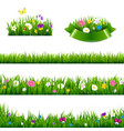 flowers borders big set vector image vector image