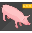 pig isometric vector image vector image
